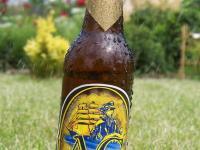 Konkurs dla grafików na etykietę piwa!